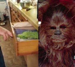 imagen Un cajón de cocina que suena igual que Chewbacca