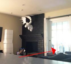 imagen Youtuber graba algo espeluznante en su casa