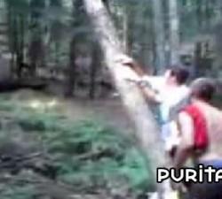 imagen el castigo de la naturaleza