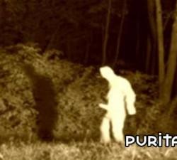imagen un fantasma muy fantasma