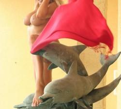 ember jugando con los delfines